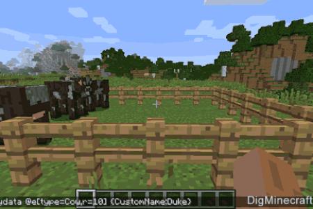 Minecraft Spielen Deutsch Minecraft Wii U Namen Ndern Bild - Minecraft wii u namen andern