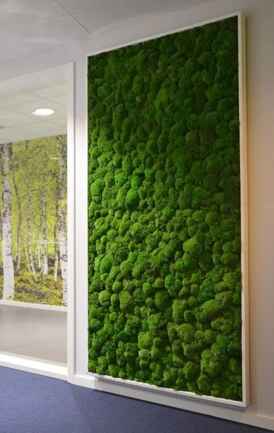 a framed moss wall will add freshness to the space, besides, it's easy to maintain