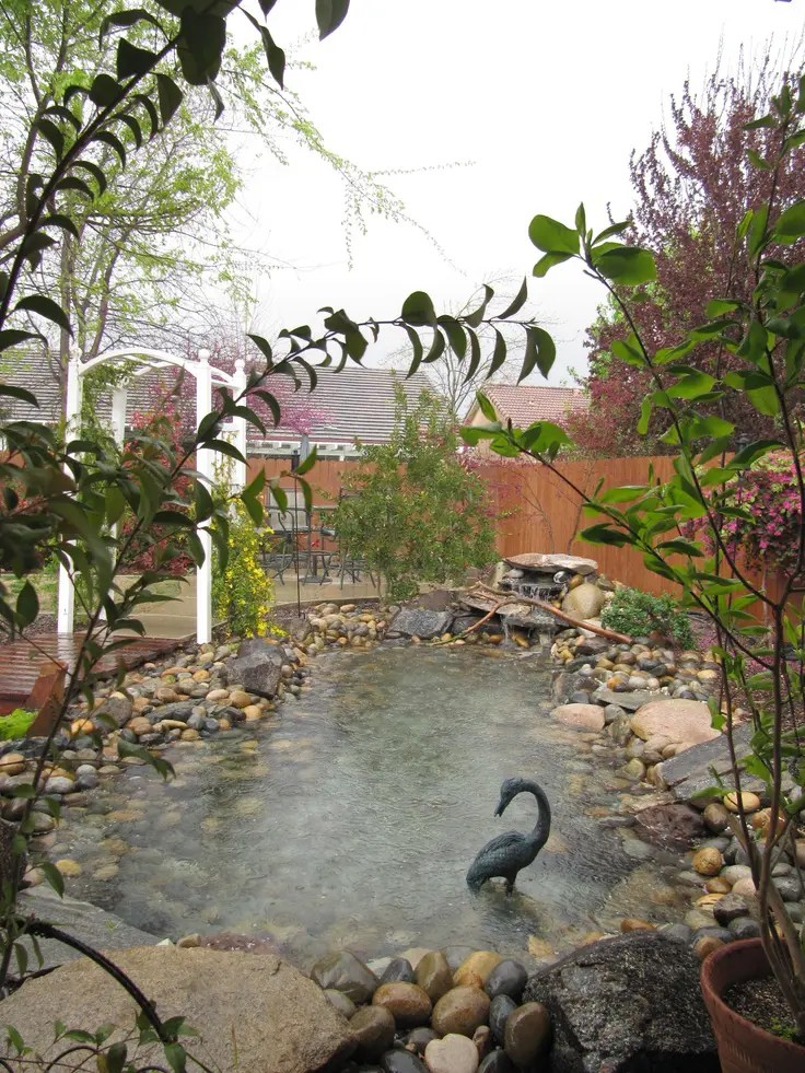 Outdoor Water Ponds