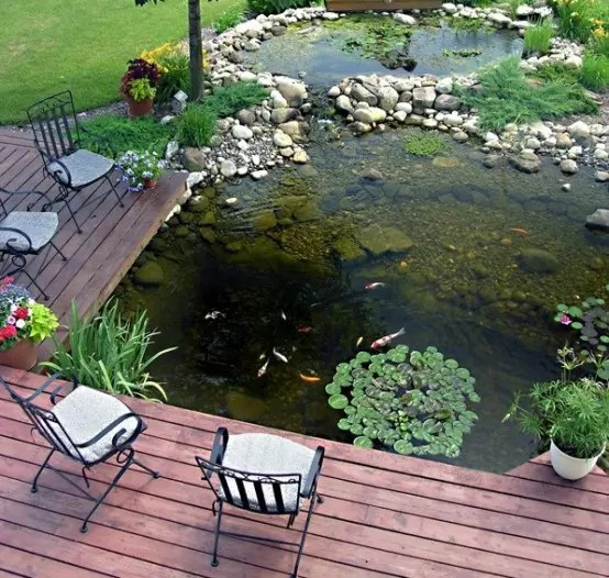 Patio Fish Pond Ideas