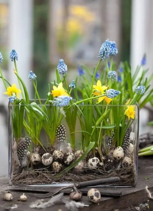 32 Cool Daffodils D 233 Cor Ideas To Welcome Spring Digsdigs