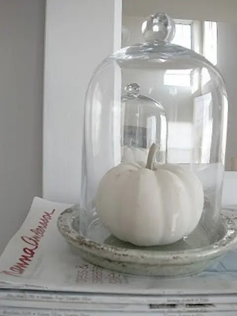 a white pumpkin in a cloche is a stylish minimal fall decoration that you can make very fast