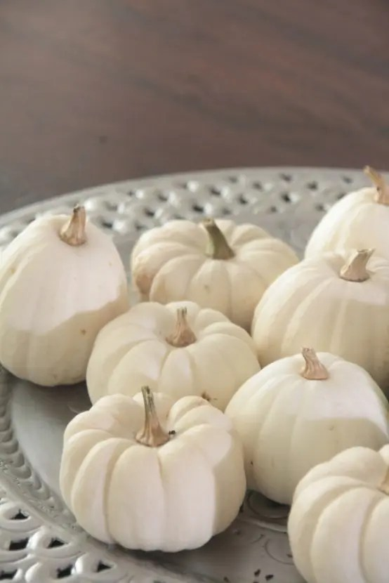 a grey plate with white pumpkins is a simple and chic fall centerpiece or decoration you can make up last minute