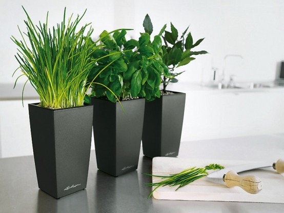 Lechuza Sub Irrigation Planters With Modern Design Digsdigs
