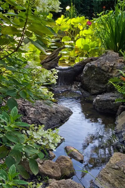 75 Relaxing Garden And Backyard Waterfalls - DigsDigs on Backyard Stream Ideas id=94006