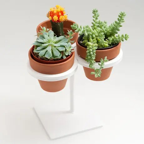 5 Cool Planters To Save Countertop Space From Poketo
