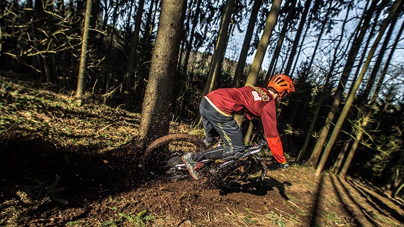 Derby Digs Cottage mountain biking in Derby Tasmania