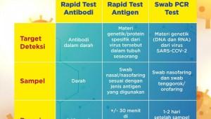 Infografis: Perbedaan Rapid Tes Antibodi, Antigen dan Swab PCR Test