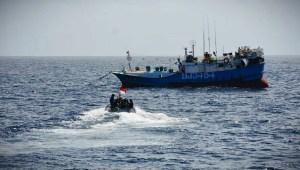TNI AL Tangkap Kapal Ikan Asing Berbendera Taiwan, 12 Ton Ikan Disita