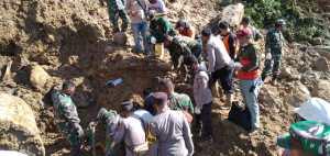 Terkait Longsor PLTA, Walhi Sumut Soroti Pembangunan di Daerah Bencana