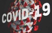 Update Covid-19 Nasional Sabtu 14 Agustus: Positif 28.598, Sembuh 31.880