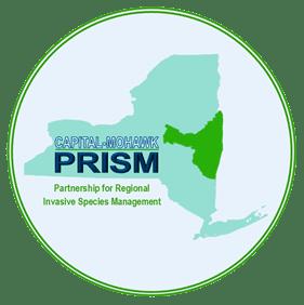 PRISM-Proud-Partner