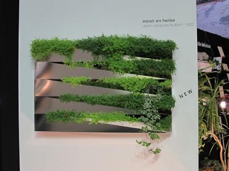 Miroir végétal