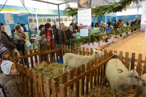 Dijon Congrexpo, foire 2012, la ferme