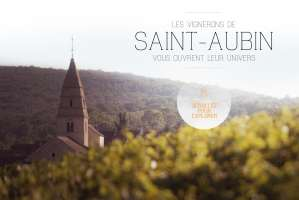 Saint-Aubin on the web