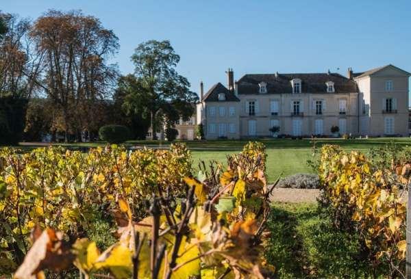 Le château de Meursault depuis le vignoble © Clement Bonvalot