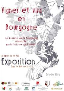 Le vignoble bourguignon: une histoire, une expo
