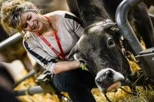 Salon de l'Agriculture: la Côte-d'Or monte à Paris
