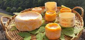 Langres, plus bourguignon que champenois