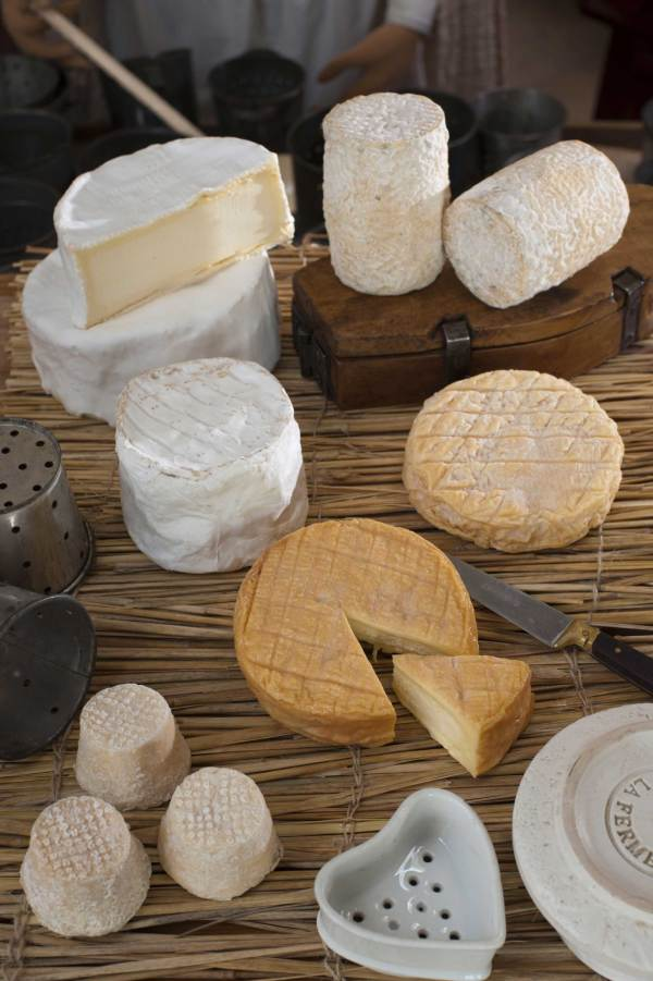 les-6-fromages01