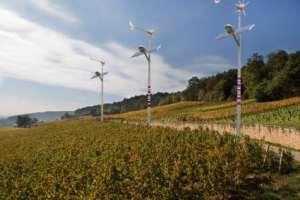 Des éoliennes biodynamiques plantées dans nos vignes !