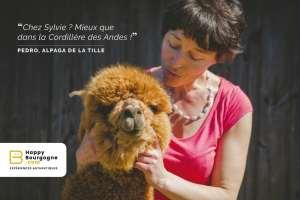 Happy Bourgogne, la plateforme qui veut réinventer le tourisme local