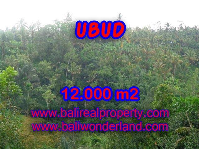 Tanah di Ubud dijual 12.000 m2 di Ubud Payangan