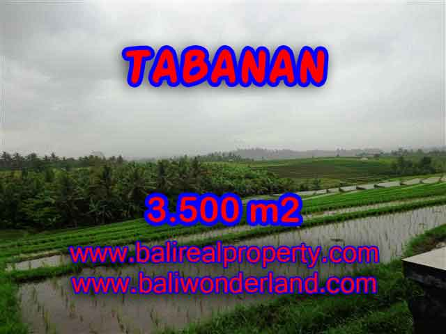 PELUANG INVESTASI PROPERTI DI BALI - TANAH DI TABANAN DIJUAL TJTB141