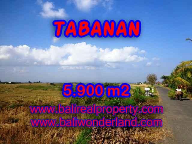 TANAH DI TABANAN DIJUAL TJTB131 - INVESTASI PROPERTY DI BALI