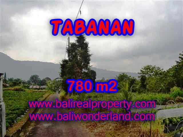 INVESTASI PROPERTI DI BALI - TANAH DIJUAL DI TABANAN BALI TJTB100