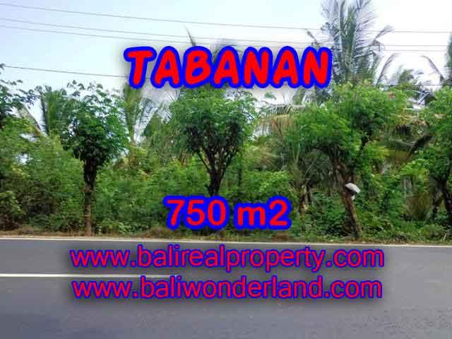 Kesempatan Investasi Properti di Bali - Jual Tanah murah di TABANAN TJTB138