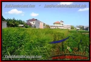 JUAL MURAH TANAH di CANGGU 770 m2  View Sawah