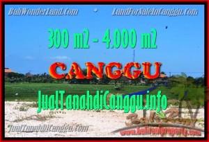 TANAH MURAH DIJUAL di CANGGU Untuk INVESTASI TJCG151