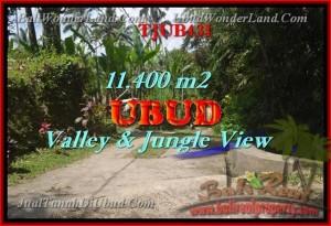 TANAH JUAL MURAH  UBUD BALI 114 Are View hutan dan Tebing