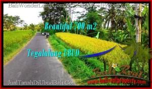 JUAL MURAH TANAH di UBUD Untuk INVESTASI TJUB497