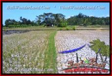TJUB456 - JUAL TANAH MURAH DI UBUD - LAND FOR SALE IN BALI 5