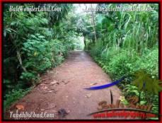 JUAL TANAH di UBUD 6 Are View Tebing dan kebun