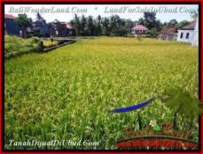 TANAH DIJUAL MURAH di UBUD Untuk INVESTASI TJUB508
