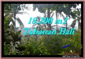 TANAH JUAL MURAH  TABANAN 18,200 m2  View kebun dan laut