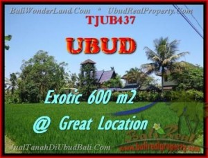TANAH DIJUAL di UBUD TJUB437