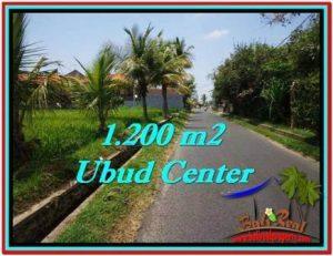 JUAL TANAH MURAH di UBUD 1,200 m2 di Sentral Ubud