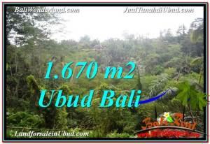 JUAL MURAH TANAH di UBUD 16.7 Are View Tebing