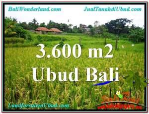 JUAL TANAH MURAH di UBUD 3,600 m2 View sawah link Villa dan Restorant