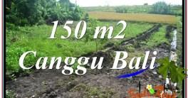TANAH DIJUAL di CANGGU BALI 150 m2 View sawah