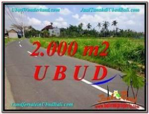 TANAH di UBUD JUAL 2,000 m2  View  Sawah link Villa