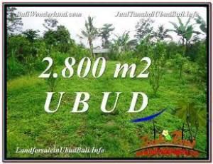 TANAH JUAL MURAH  UBUD 28 Are View kebun