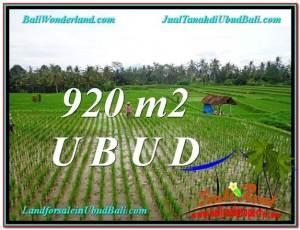 DIJUAL TANAH di UBUD 920 m2 di Ubud Payangan