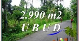 JUAL TANAH di UBUD BALI 2,990 m2 di Ubud Tegalalang