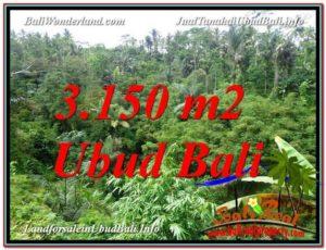 JUAL MURAH TANAH di UBUD 3,150 m2  View Tebing dan Sungai