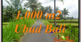 JUAL TANAH MURAH di UBUD BALI 10 Are View Sawah, Link. Villa